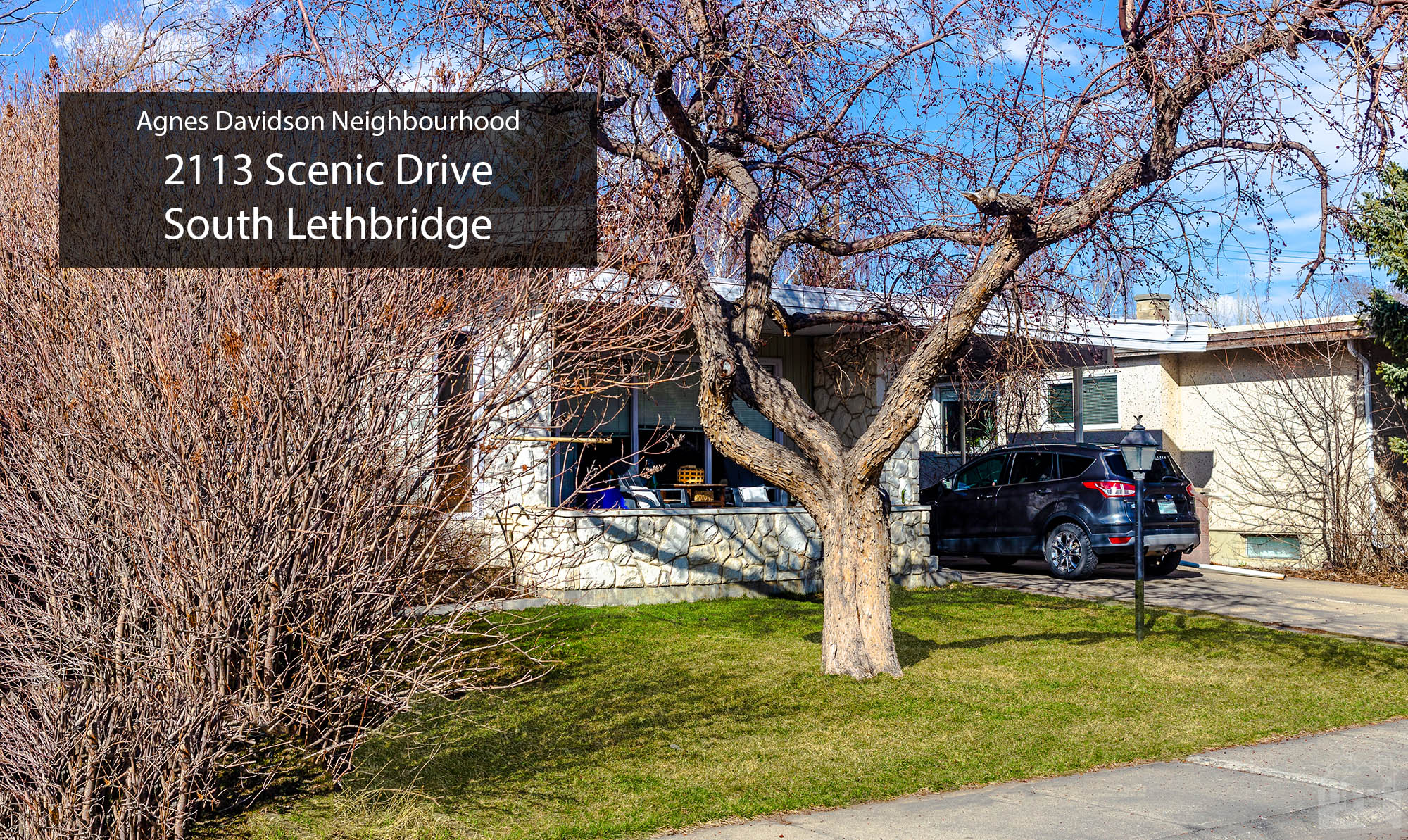 2113 Scenic Drive South Lethbridge (Lower Suite) Cover image